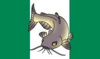 Nigerian Flag with Catfish
